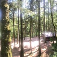 Horseshoe Bend group site - Cowichan River Prov. Park.JPG